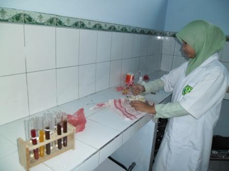 Pembuatan indikator asam basa dari bunga